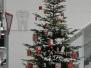 11-2010 Weihnachtsbaum