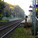 Forstwald -Eiserner Rhein-