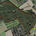 Laufstrecke im Forstwald