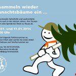 tannenbaum14_farbig